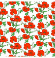 pattern with poppies vector image