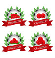 whole ripe berry red cranberry vector image