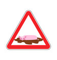 attention unclean warning road sign pig in mud vector image vector image