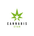 cannabis leaf logo design inspiration vector image