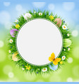 easter card with grass and eggs vector image vector image