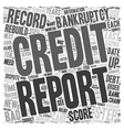 Easy Steps to Rebuild Your Credit after Bankruptcy vector image vector image