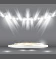 golden white podium vector image