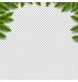 green fir tree border isolated transparent vector image