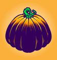 jack o lantern pumpkins vector image vector image