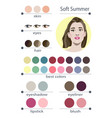 seasonal color analysis palette for soft summer vector image vector image