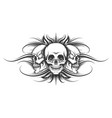 three skulls tattoo vector image vector image