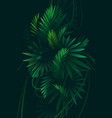 tropical background with palm leaves vector image