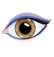 beautiful eye vector image