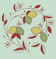 branch of lemon tree with flowers and leaves vector image vector image