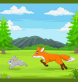 fox is chasing a rabbit in an african savanna vector image vector image