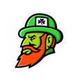 leprechaun head mascot vector image vector image