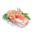 Salmon stake Watercolor imitation with sketch vector image vector image