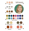seasonal color analysis palette for soft autumn vector image vector image
