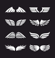 set wings vector image vector image