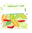 autumn background in green yellow with rowan berry vector image