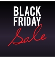Black Friday sale large banner on dark background vector image