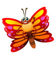 butterfly with red and yellow wings vector image vector image