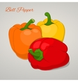 Cartoon sweet tomatoes isolated on grey background vector image