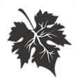 Grape leaf vector image