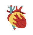 human heart isolated icon vector image
