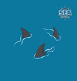 shark fins on a blue background danger fish vector image vector image