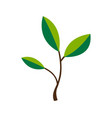 tree icon with green leaves - eco concept vector image vector image