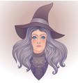 wiccan witch young woman with long hair and magic vector image