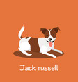 an depicting a cute jack russell dog cartoon vector image