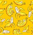 banana tropics seamless pattern hand-drawn vector image vector image