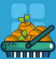 fresh carrots super market products vector image vector image