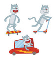 little cat in action vector image