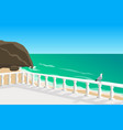seascape with seagull vector image vector image