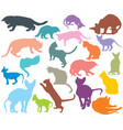 set of colorful cats silhouettes-3 vector image vector image