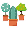 tools decoration gardening flat design vector image vector image