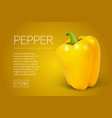 yellow pepper isolated on transparent background vector image
