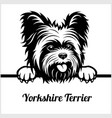 yorkshire terrier - peeking dogs - - breed face vector image vector image