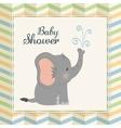 Baby Shower elephant Pastel design vector image