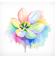 Beautiful flower watercolor painting mesh vector image vector image