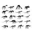 big set skeleton ancient dinosaur vector image