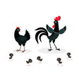black chicken family isolated on white background vector image vector image