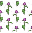color seamless pattern of peony flowers vector image vector image