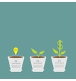 Idea bulb seed watering can dollar plant in pot vector image