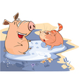 Pig and Cat in Puddle vector image vector image