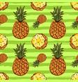 pineapple tropics seamless pattern hand-drawn vector image