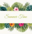 summer time tropical design frame top bottom vector image vector image
