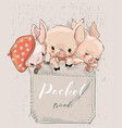 three cute lovely cartoon pigs on pocket vector image