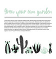 cacti banner vector image vector image