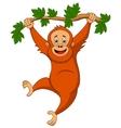 Cute orangutan cartoon hanging on a tree branch vector image
