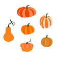 pumpkin vegetable vector image vector image